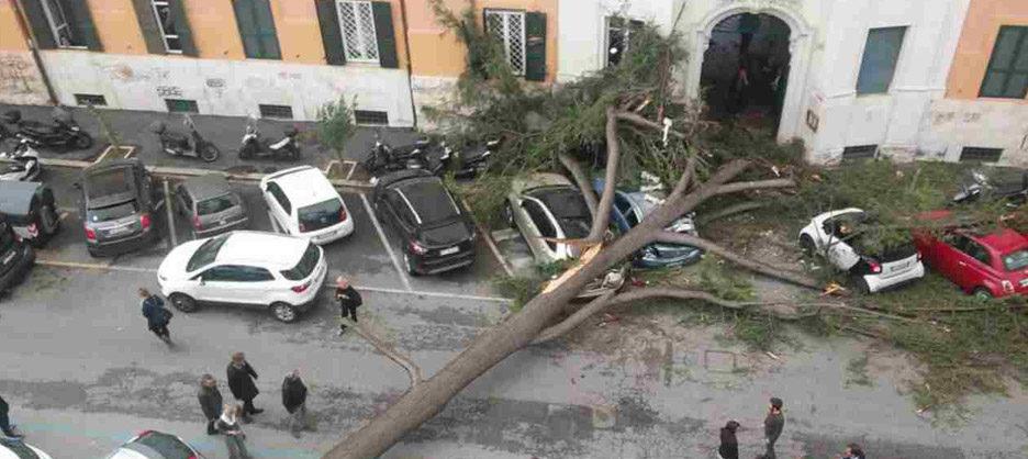 roma-alberi-caduti-vento_ok